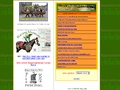 Bagenalstown Guide