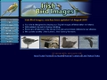 Irish Bird Images